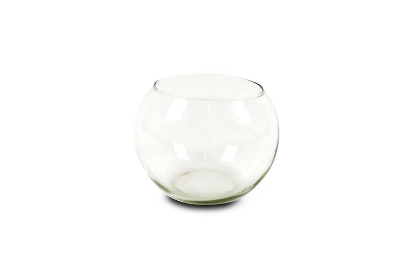 Bes 25504 acquariologia beselettronica mini acquario vetro con