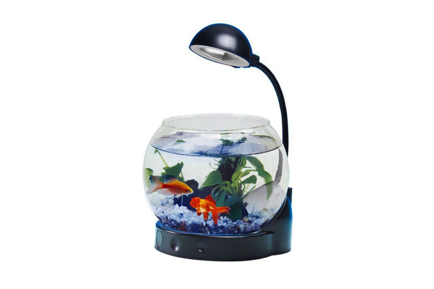 Mini acquario vetro con illuminazione a led boccia pesci con lampada