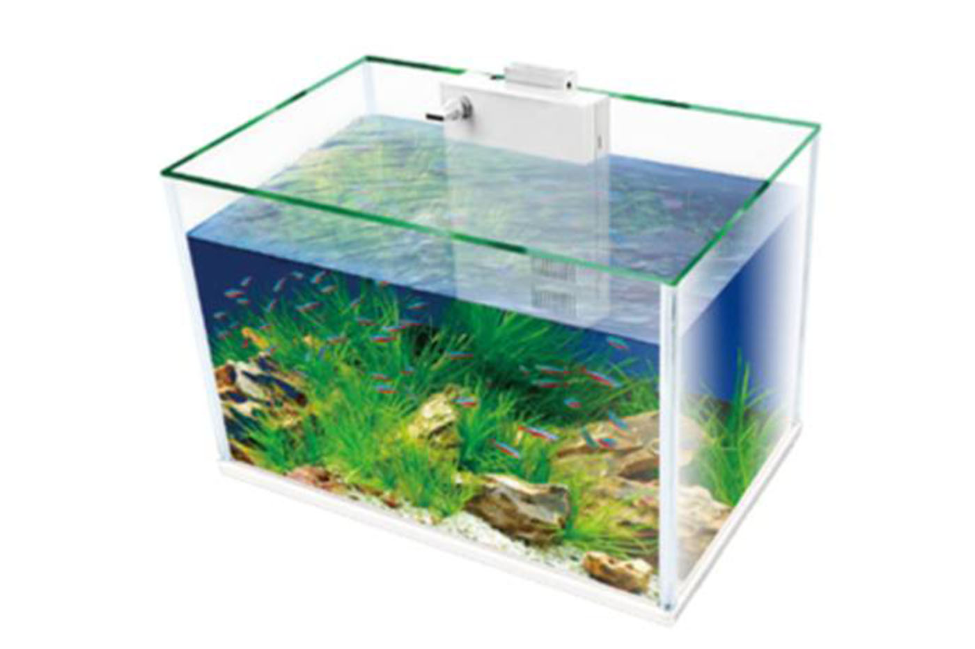 Bes acquariologia beselettronica lampada a led smd e