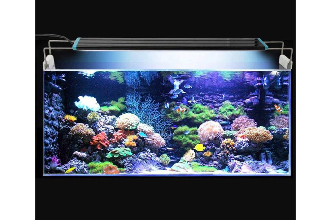 Bes acquariologia beselettronica lampada led d